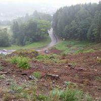 Nach der Waldrodung Richtung Rigole